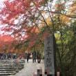 久々の仲良し3人で京都大原へ