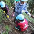 子供たちが学校林で道の修理