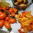 🎵 「福井・大野の里芋と奈良の渋柿、 もらってくださる?」、「いただきますとも!」