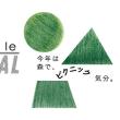 kinokaフェス★9/16森林公園