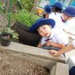 あお・みどり・おれんじ 3・4・5歳児 戸外遊び☆