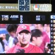 鯉戦士写真館 in 神宮 2017.09.01