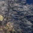 冬が来る前の碓氷湖
