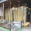 噂の東山動植物園のフクロテナガザル