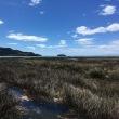 NZ日記 1/12-17、Abel Tasman National Park 5days Tramping