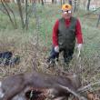 蝦夷鹿の流し猟