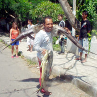 バリ島でダイビングの休息中にカジキとシイラ