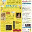 漢字の歴史と美