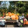 恒例の秋の旅行🎶 Part1