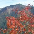 焼岳                  2017.10.8