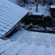 高知にも雪