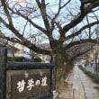 銀閣寺キャンデー店