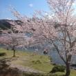 今日の亀山 2019/4/15(月)