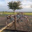 自転車トレーニング 再開