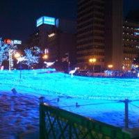 ☆2010ホワイトイルミネーション☆