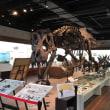 山口県立山口博物館に行ってきました