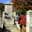 晩秋の「墓参ら~」ー1