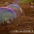四国撮影旅行ー夕景と干潟