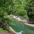 清流日本一のまち、宮川ダムから大杉谷へ