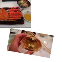 ジャッキーの真珠婚式旅行(越前ガニ編)enjoyed the Japan sea crab which tastes very good