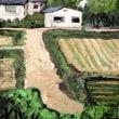 緑と家と農道と