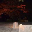 駒込・六義園:紅葉と大名庭園のライトアップ(2)
