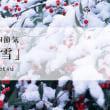 @大雪(たいせつ)