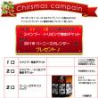 クリスマス・プリベイトキャンペーン