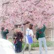 春のサプライズ
