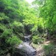 山岳点景:夏色渓谷
