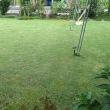 芝刈り 2回目