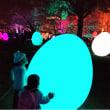 福岡城 チームラボ 城跡の光の祭