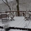 この冬初の本格的な雪に初雪掻きを楽しむ。