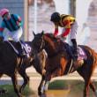 ディープ産駒初のダートGⅠ馬誕生!アルゼンチン共和国杯はパフォーマプロミスが勝つ。