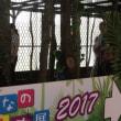みんなの世界昆虫展2017