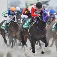 今週の追っかけ馬(12月2日・3日)