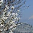 囲碁と堅堀駅付近からの富士山
