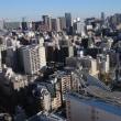 都庁の隣に富士山