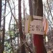 興因寺山No2 2016年12月17日