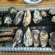 福岡・糸島の牡蠣小屋