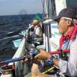 8月度定例会 剣崎沖のマダイ釣り
