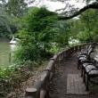 静かな、 憩いの場 ・・・・ 井の頭公園