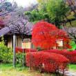 町田薬師池公園に国重文の「旧永井家住宅」