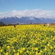 琵琶湖湖畔♨️で近江牛❗️