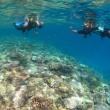 9月の水納島