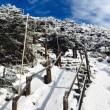 北八ヶ岳スノーシューと縞枯山荘
