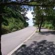 2016 第二回石垣島ウルトラマラソン 37kmあたりで編