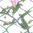 photo 6/08