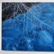 小林 義明さんの写真展、「光の色・風の色2」の後半に♪