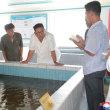 朝鮮民主主義人民共和国:鮭養殖の次なる超大国に?